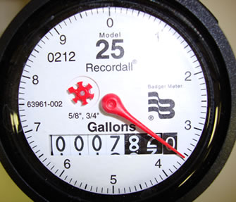 meter example gallons